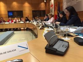 Representantes da Secretaría Xeral da Igualdade da Xunta participaron no marco da Conferencia Sectorial de Igualdade celebrada hoxe en Madrid